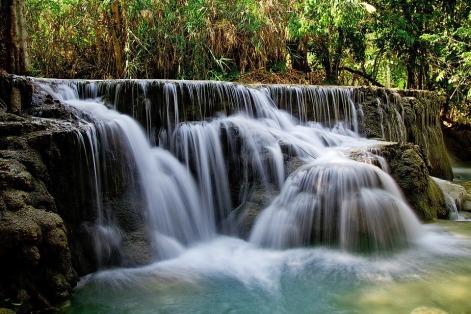 ape naturale